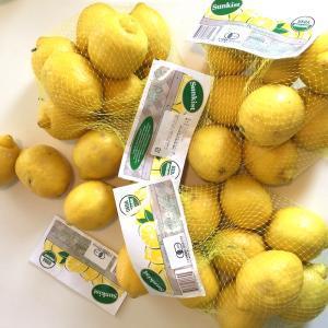 朝のレモン水はダイエットに効く!便通が良くなり-2kgは余裕