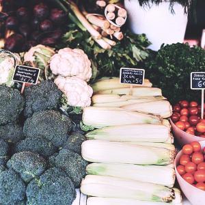 (90日目) 肌にいい野菜のお陰「宇津木式・肌断食」 でも乾燥しらず