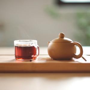 56才で30代に見える南雲先生の「ごぼう茶」 2ヶ月ぶりのジムでもバテ知らず