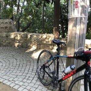 天野街道をクロスバイクで今度こそサイクリングしてきた!