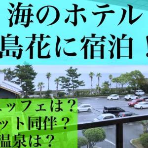 海のホテル 島花に宿泊!愛犬のペットと宿泊でき、自転車駐輪場があるホテル