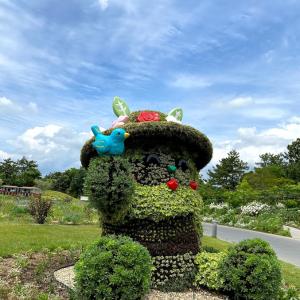 浜名湖花フェスタ2021② 当日の朝