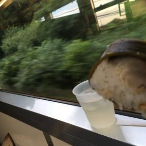 駅弁は鳥取で買った鯖寿司(ホームまで持って来てくれます)