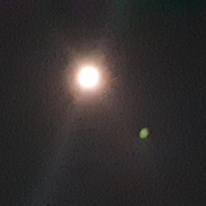 今日は満月、且つ、国中の神社が「お祓い」する日!自己浄化にも最適そう!