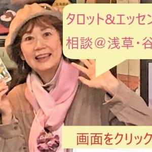 タロットとフラワーエッセンス相談@東京谷中・12月21日、12月23日、12月29日のお知らせ