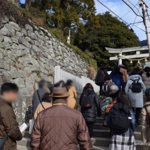 筑波山で日光より古い三猿を見てきました!