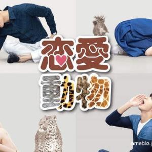 台湾ドラマ「恋愛動物」と「年下のオトコ」
