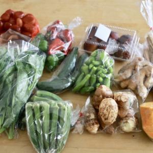 料理は買い物から始まっている!?献立に迷わない食材の買い出し方法