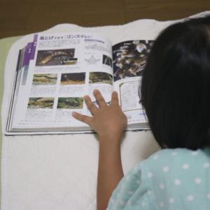 「図鑑」は子育てにとてもいい!子どもが図鑑に親しむためのポイント3つ