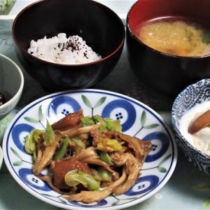 11月9日の母の夕食 煮豚とキャベツの炒め物など