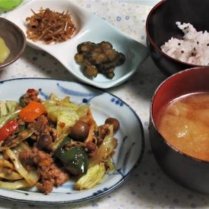 1月17日の母の夕食 野菜とミートローフのソース炒めなど
