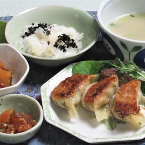 6月14日の母の夕食 餃子(リベンジ)など