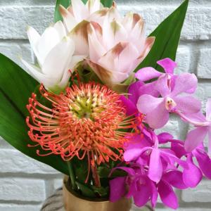 目の保養に(๑˘ ³˘)♡夏の花といい男!パクソジュンとwww