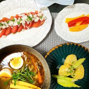 札幌【マジックスパイス】の素でスープカレーな日!