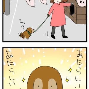 勇者の散歩