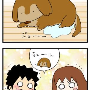 老犬のかわいさは子犬時代を凌駕する