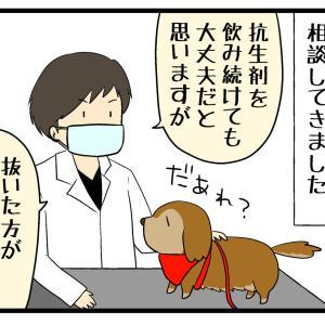 再発する歯根膿瘍(根尖膿瘍)2