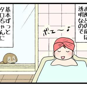 お風呂を覗く犬