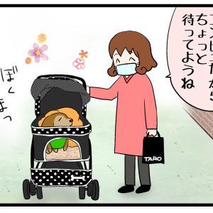 お散歩中に出会った人々②&新年のごあいさつー!