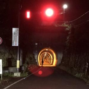 京都最終日、記念撮影はライトアップされたトンネルのなかで