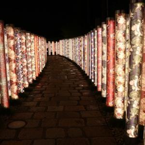 my home city 京都を楽しもう