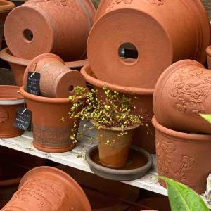 植木鉢ってどう選ぶ?                  ストリアツラ販売
