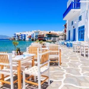 リゾート地の好きな人や猫好きな人におすすめの旅行場所☆ミコノス島