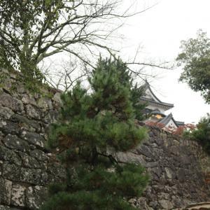 ゆるきゃらと国宝「彦根城」