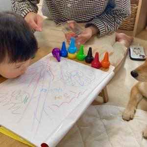 絵描きに初挑戦する娘を退屈そうに見守る柴犬