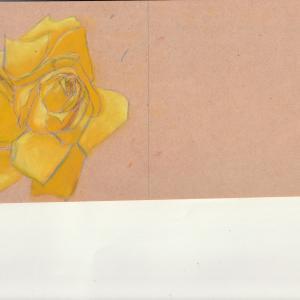 黄色いバラの練習とロン毛様