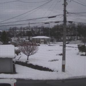 雪・・・あなどれない・・・。
