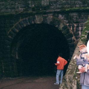 中伊豆 旧天城トンネルへ