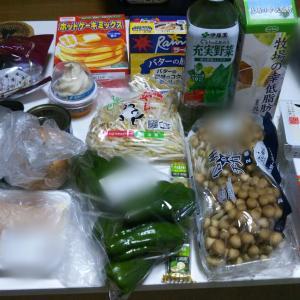 3月4週目食費残と購入品