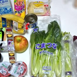 9月3週目食費残と購入品