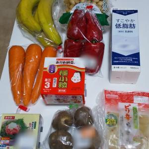 9月4週目食費残と購入品