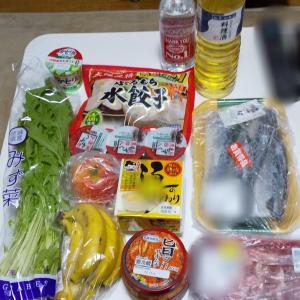 10月1週目食費残と購入品