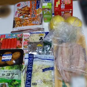 1月3週目食費残と購入品