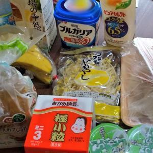 6月3週目食費残と購入品