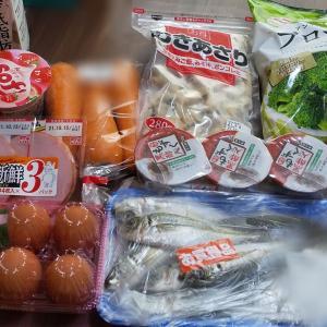 9月2週目食費残と購入品