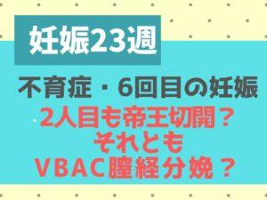 不育症の妊娠23週(6か月) 帝王切開か自然分娩(VBAC)かで迷う