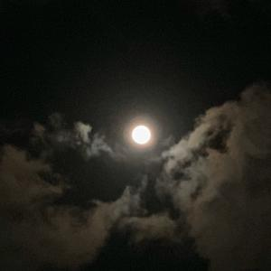 ▶︎夜道を照らす優しい光のチカラ。
