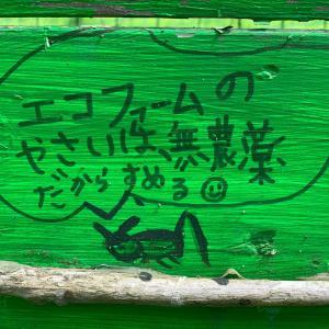 ▶︎打ち合わせ→再開!→再会!