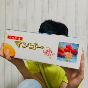 ▶︎7月☆BEST10記事★やってきた元気玉!