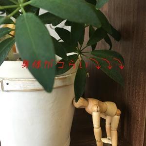 台風が近づくと起こる体の不調 ! ! !