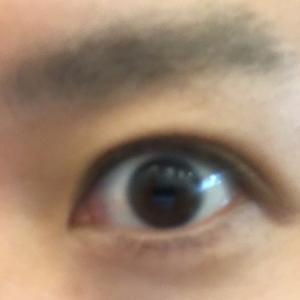 眼精疲労は目のピントが関係 ? ?