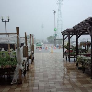 今磐田市豊岡で『雹』(ひょう)が降ってきましたよ ! !