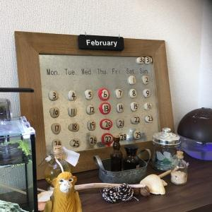 Eternal袋井店&吉田店2月の営業日 ! !