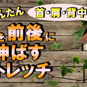 【ストレッチ動画】首を前後に伸ばすストレッチ(動画有)