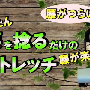 【ストレッチ動画】腰をひねるだけの簡単なストレッチ腰が楽に!!(動画有)