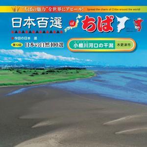 日本の百選of千葉 第12回小櫃川河口の干潟 木更津